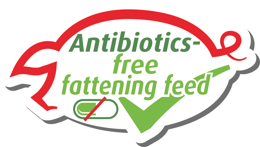 antibiotics-free-icon-en